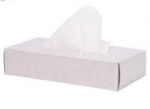 Economy Facial Tissues 2 ply 100 Sheets